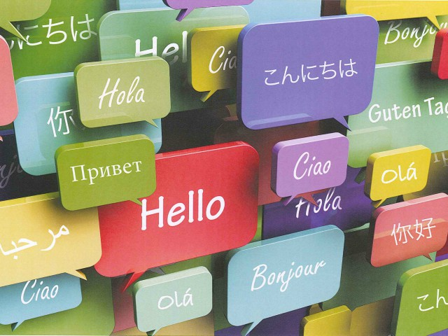 Foreign language use in attracting investment